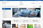 Профессионально создам интернет-магазин на insales + 20 дней бесплатно 99 - kwork.ru