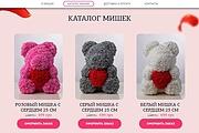 Сделаю копию Landing Page c настройкой 16 - kwork.ru