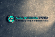 Разработаю дизайн логотипа 216 - kwork.ru