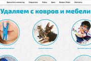 Качественная копия лендинга с установкой панели редактора 180 - kwork.ru