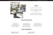 Создание современного лендинга на конструкторе Тильда 133 - kwork.ru