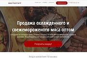 Скопирую Landing Page, Одностраничный сайт 162 - kwork.ru