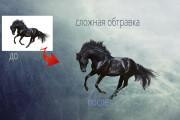 Удаление фона, обтравка, отделение фона 24 - kwork.ru