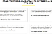 Создам лендинг на вордпресс 98 - kwork.ru