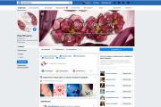 Дизайн группы в Facebook 8 - kwork.ru