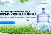 Копирование лендингов, страниц сайта, отдельных блоков 60 - kwork.ru