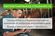 Разработка стильных презентаций 32 - kwork.ru