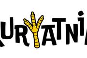 Ваш новый логотип. Неограниченные правки. Исходники в подарок 315 - kwork.ru