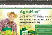 Скопирую страницу любой landing page с установкой панели управления 105 - kwork.ru