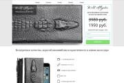 Скопирую Landing Page, Одностраничный сайт 208 - kwork.ru