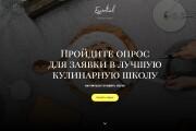 Квиз-лендинг под ключ 63 - kwork.ru