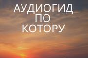 Озвучу текст, аудиокнигу 3 - kwork.ru