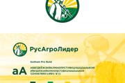 Ваш новый логотип. Неограниченные правки. Исходники в подарок 247 - kwork.ru