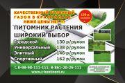 Разработаю макет баннера 17 - kwork.ru