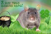 Изменение фона на фото 61 - kwork.ru