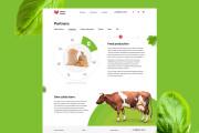 Веб дизайн страницы сайта на Тильде 20 - kwork.ru