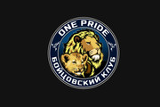 Сделаю логотип по вашему эскизу 187 - kwork.ru