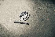Разработаю дизайн логотипа 268 - kwork.ru