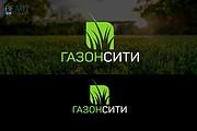 Создам качественный логотип, favicon в подарок 194 - kwork.ru