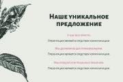 Презентация в PDF 18 - kwork.ru