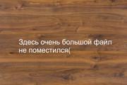 Дизайн флаера, листовки 114 - kwork.ru