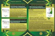 Оформлю коммерческое предложение 115 - kwork.ru
