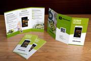 Дизайн брошюры, буклета 105 - kwork.ru
