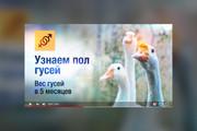 Грамотная обложка превью видеоролика, картинка для видео YouTube Ютуб 79 - kwork.ru