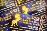 2 варианта визитки + исходник 12 - kwork.ru