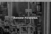 Копия сайта, landing page + админка и настройка форм на почту 133 - kwork.ru