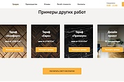 Создание сайта - Landing Page на Тильде 315 - kwork.ru