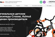 Качественная копия лендинга с установкой панели редактора 163 - kwork.ru