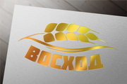 Разработаю логотип в 3 вариантах + визуализация в подарок 65 - kwork.ru