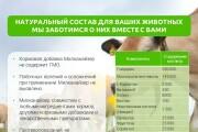 Разработка стильных презентаций 30 - kwork.ru