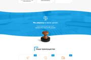 Продающий Landing Page под ключ 60 - kwork.ru