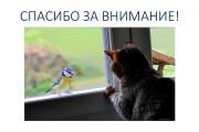 Создание презентаций 85 - kwork.ru
