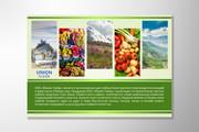Разработаю дизайн флаера, листовки 44 - kwork.ru