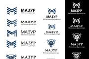 Создание логотипа 3 варианта 31 - kwork.ru