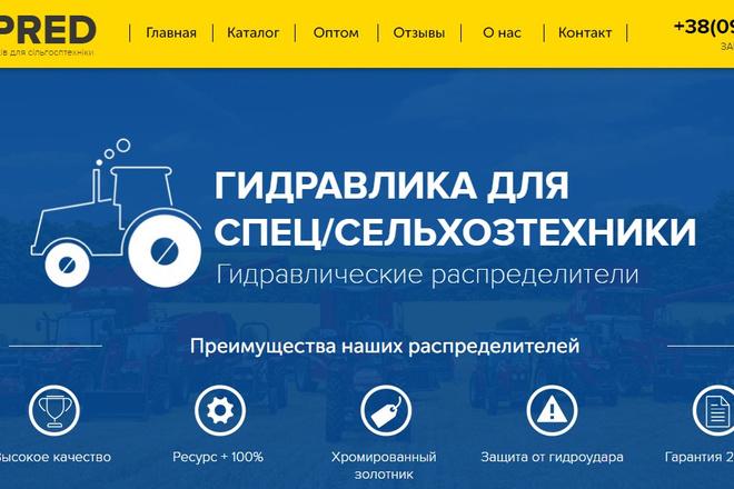 Качественная копия лендинга с установкой панели редактора 79 - kwork.ru