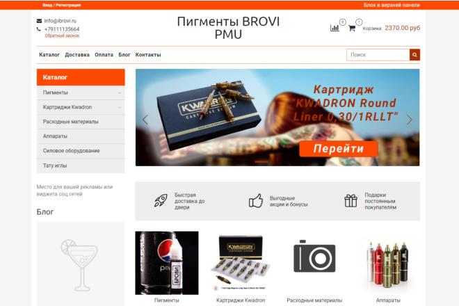Профессионально создам интернет-магазин на insales + 20 дней бесплатно 13 - kwork.ru