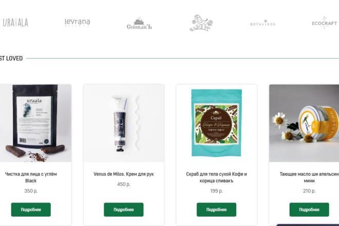 Интернет-магазин на Тильда под ключ 13 - kwork.ru