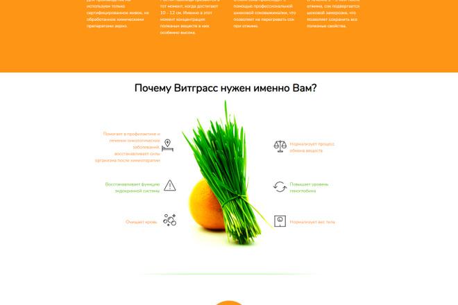 Перенос, экспорт, копирование сайта с Tilda на ваш хостинг 27 - kwork.ru