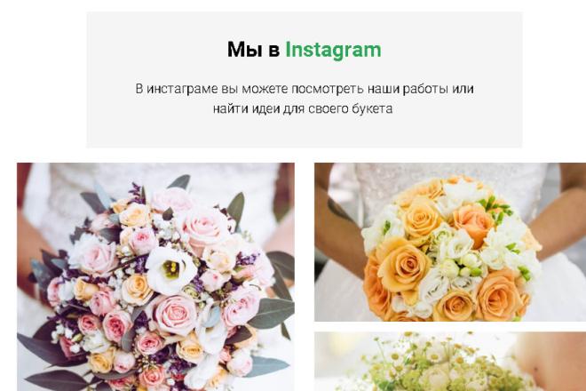 Дизайн сайтов на Тильде 8 - kwork.ru