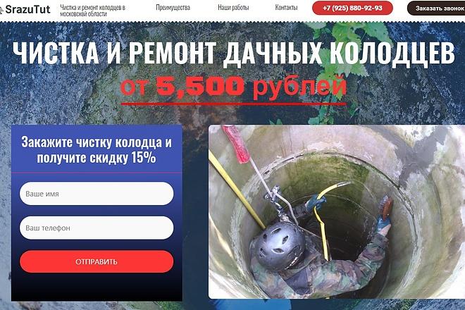 Создам лендинг на вордпресс быстро 10 - kwork.ru