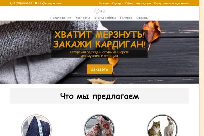Создам лендинг на вордпресс 75 - kwork.ru