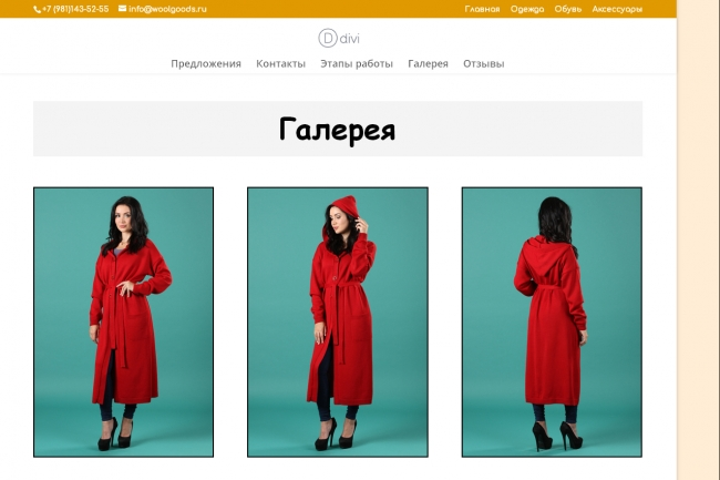 Создам лендинг на вордпресс 74 - kwork.ru