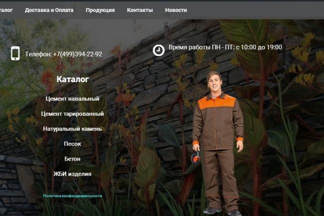 Создам лендинг на вордпресс 60 - kwork.ru