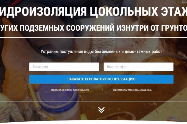 Создам лендинг на вордпресс 56 - kwork.ru