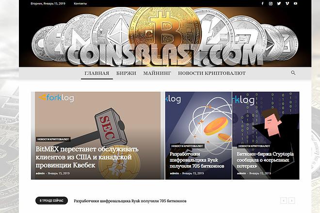 Создам автонаполняемый сайт на WordPress, Pro-шаблон в подарок 15 - kwork.ru
