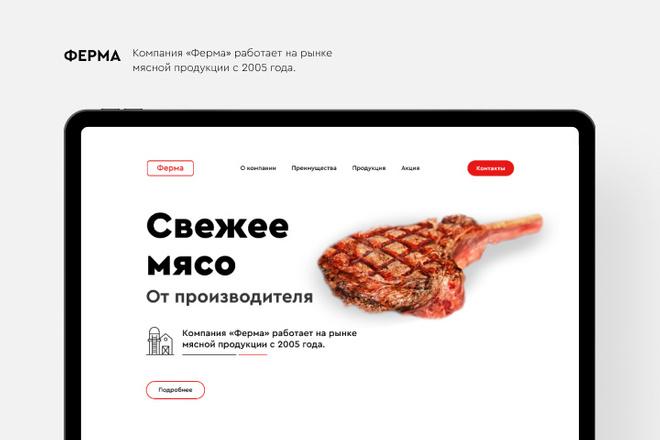 Создание Landing Page, одностраничный сайт под ключ на Tilda 21 - kwork.ru